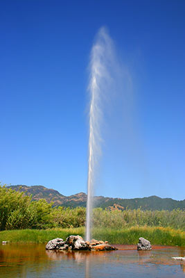 Calistoga-Old-Faithful-Geyser