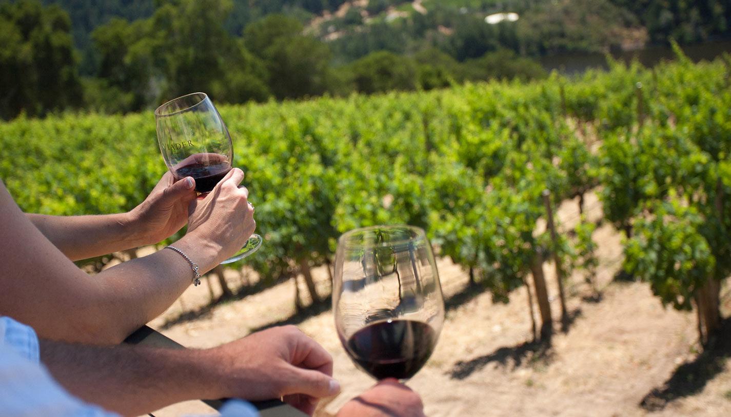 Napa Wine Tour Deals