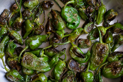 Padron Pepper Recipes