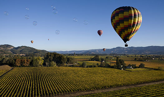 Hot air balloon ride over Napa Valley
