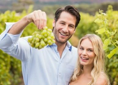 Winery Tasting Tour Napa