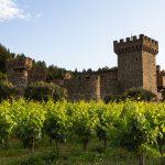 Vineyards outside of Castello di Amorosa in the Napa Valley; Calistoga, CA, Wine Country