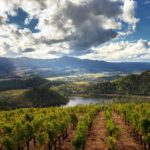 Sunny view of Napa Valley's vineyard, lake, and farmland in Calistoga, CA