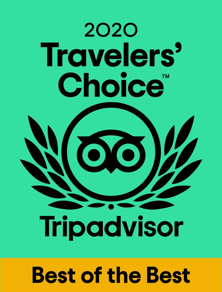 2020 TripAdvisor Travelers' Choice award logo